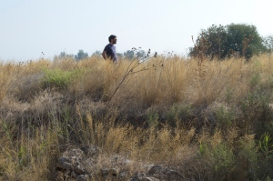 A man in tall grass, checking out a tel site